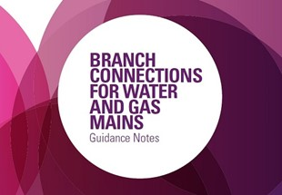 Branch connections for water and gas mains